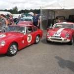 Burford and Tucker Oulton Park Gold Cup